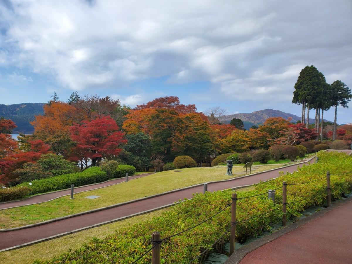 庭園の紅葉(2020年11月11日撮影)