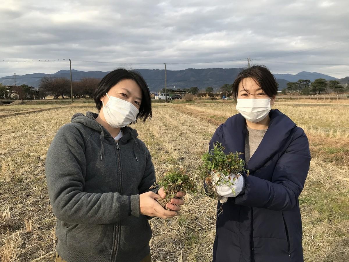 「セリ摘み」を楽しんだ佐藤香さん(左)と志村尊子さん(右)