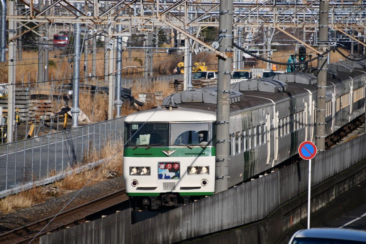 首都圏からの乗客を運び続けた185系「踊り子」(撮影=加藤恵三)