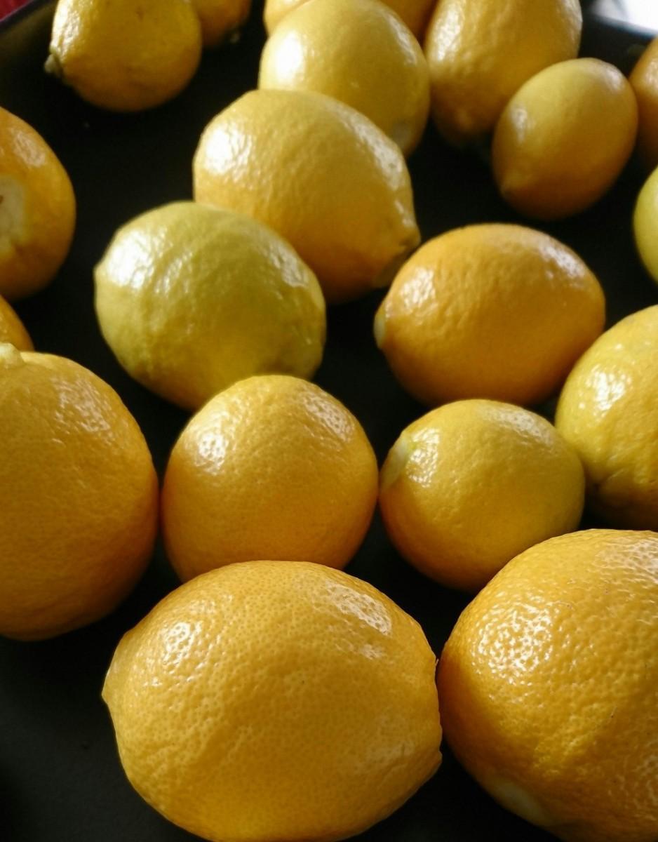 品質の良さで評価され始めている「小田原産レモン」