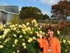 小田原フラワーガーデンで「秋のローズフェスタ」 色濃く香りの良い秋バラが見頃