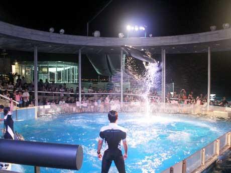 大分の水族館「うみたまご」夜のイルカショー
