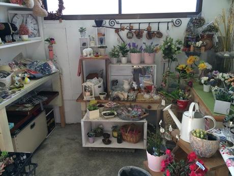 所狭しと生花や雑貨が並ぶ店内