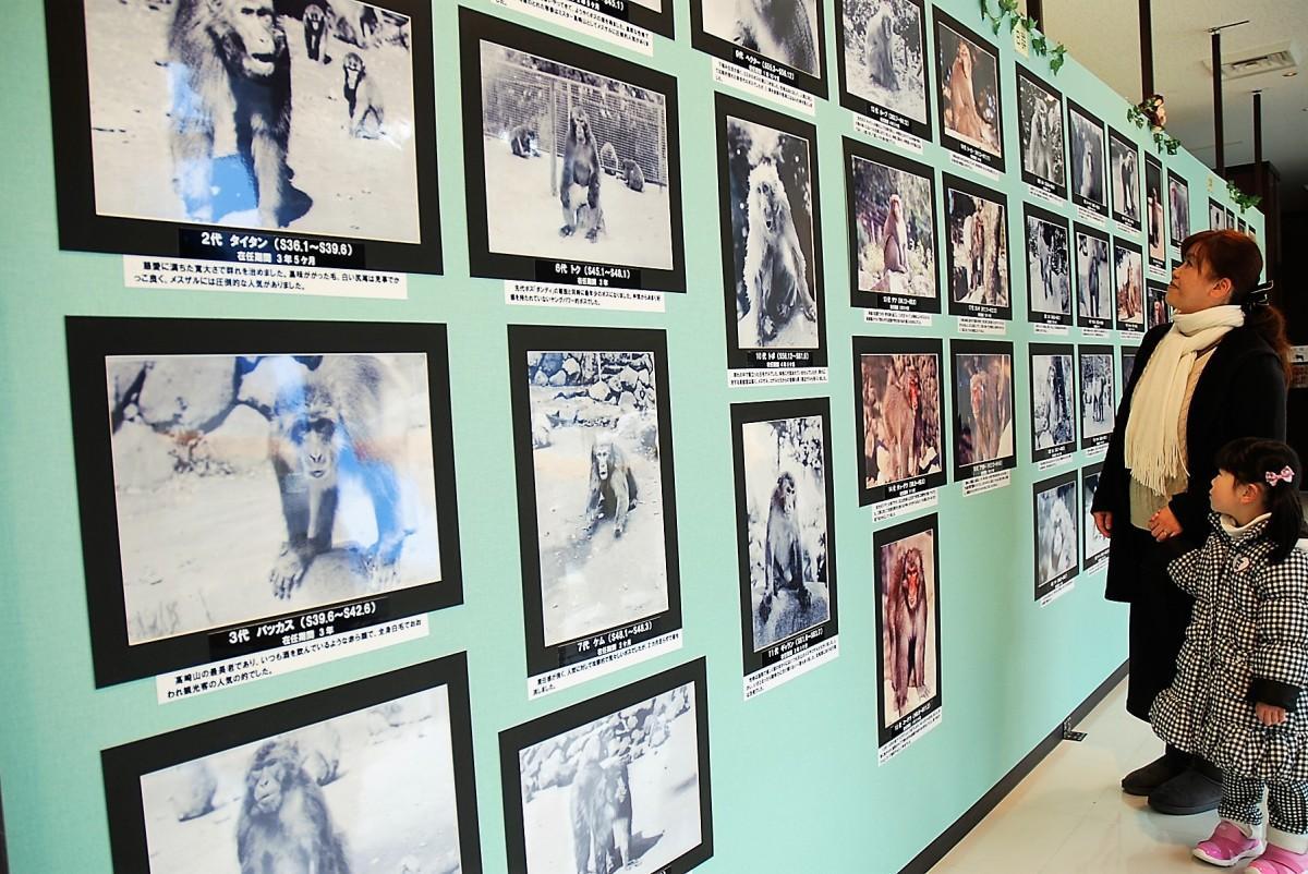 園の歴史を刻んだボスザルの写真コーナー