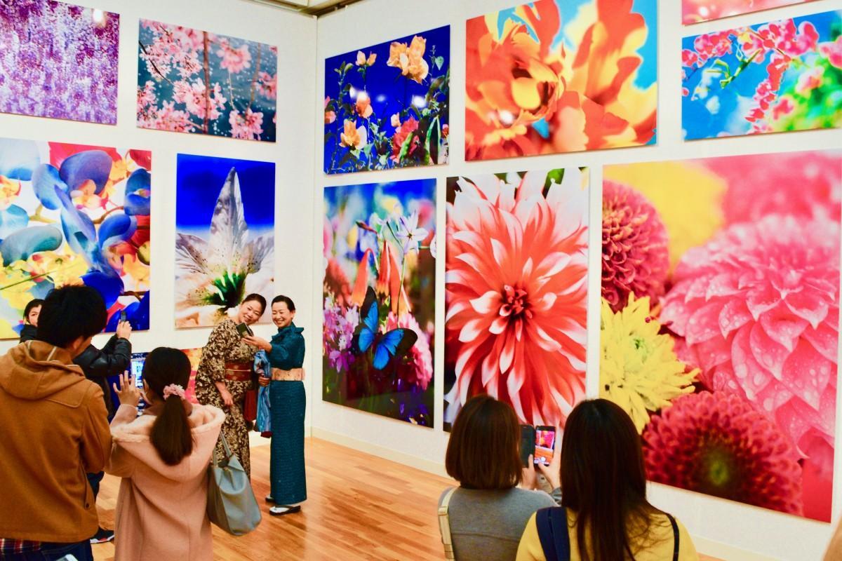 華やかな写真が並ぶ「永遠の花」エリア
