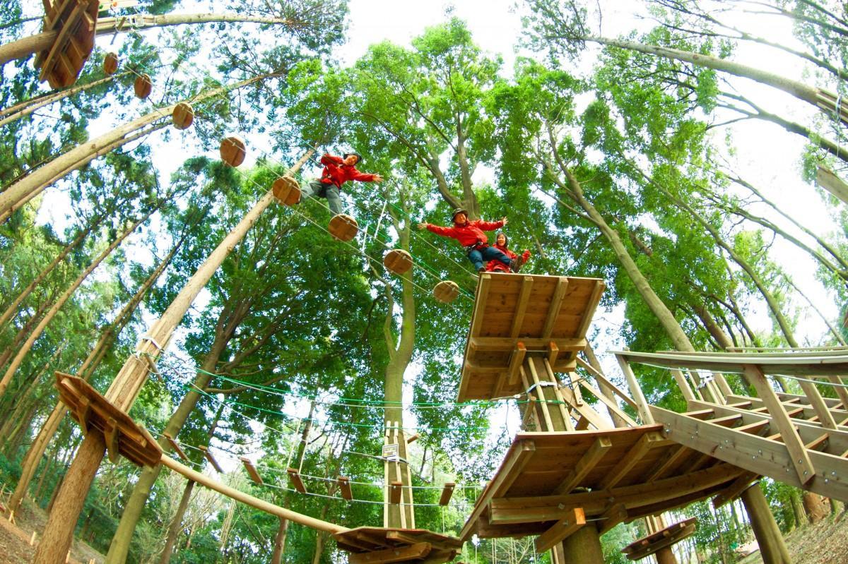 森の中でアクティビティーを楽しむフォレストアドベンチャー(フォレストアドベンチャー・別府提供)