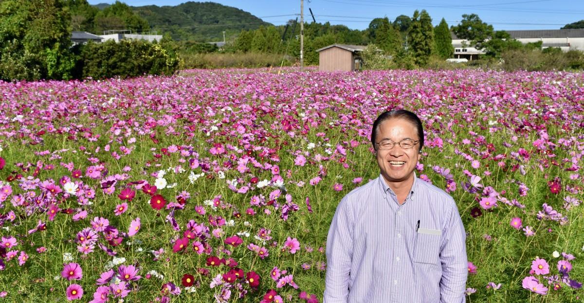 中野さんら有志が休耕地に咲かせたコスモス(10月16日14時55分ごろ撮影)
