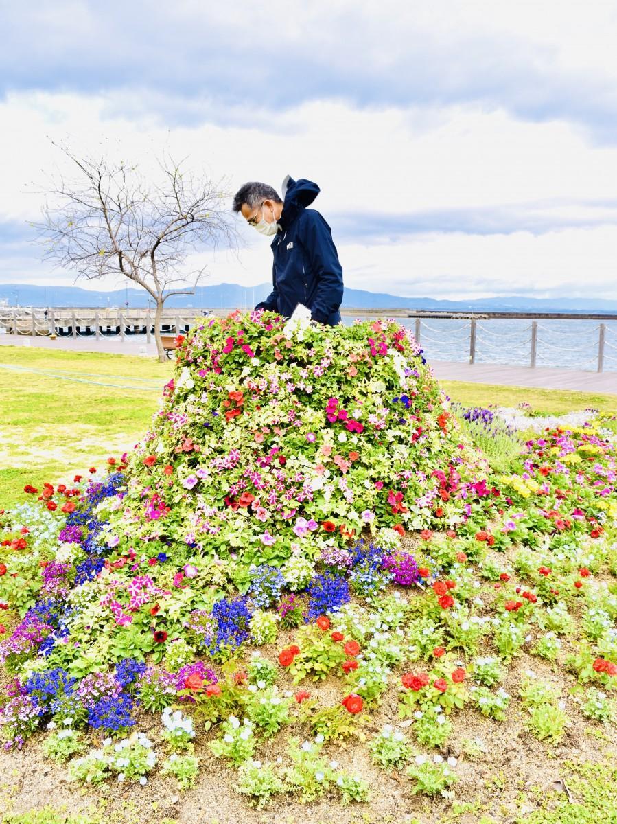 大分市・かんたん港園のドレスガーデン(4月20日11時ごろ撮影)