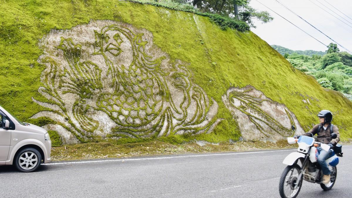 臼杵市の県道沿いに現れた「アマビエ」コケアート