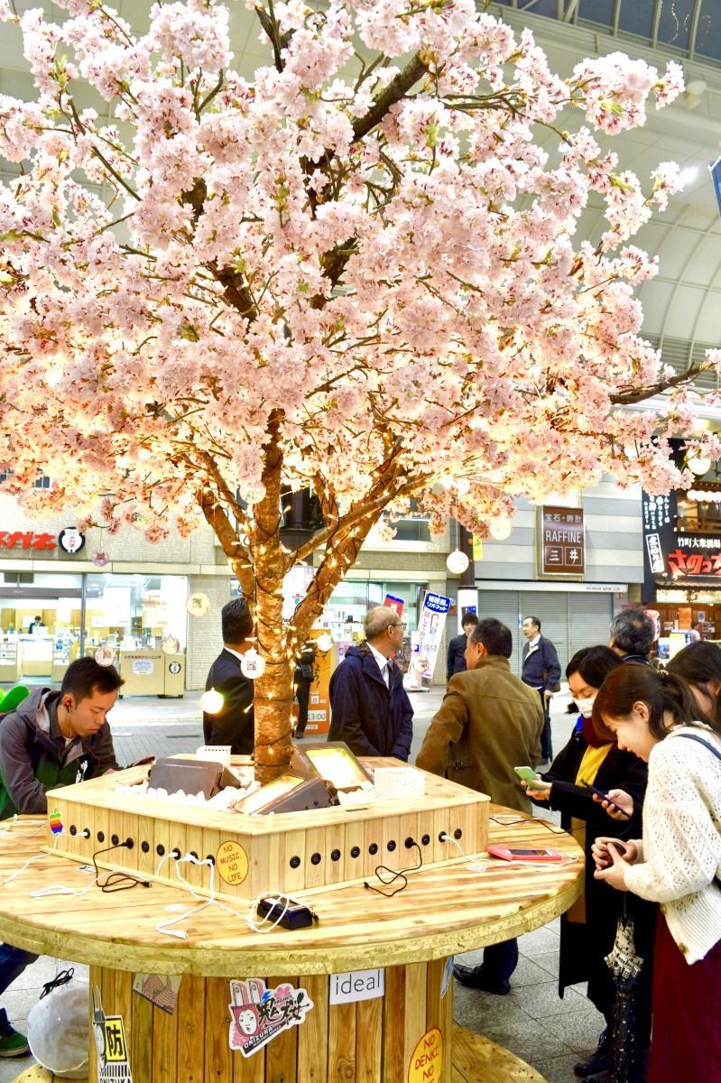 スマホの無料充電ステーション「鬼桜」(2018年11月、ガレリア竹町で)