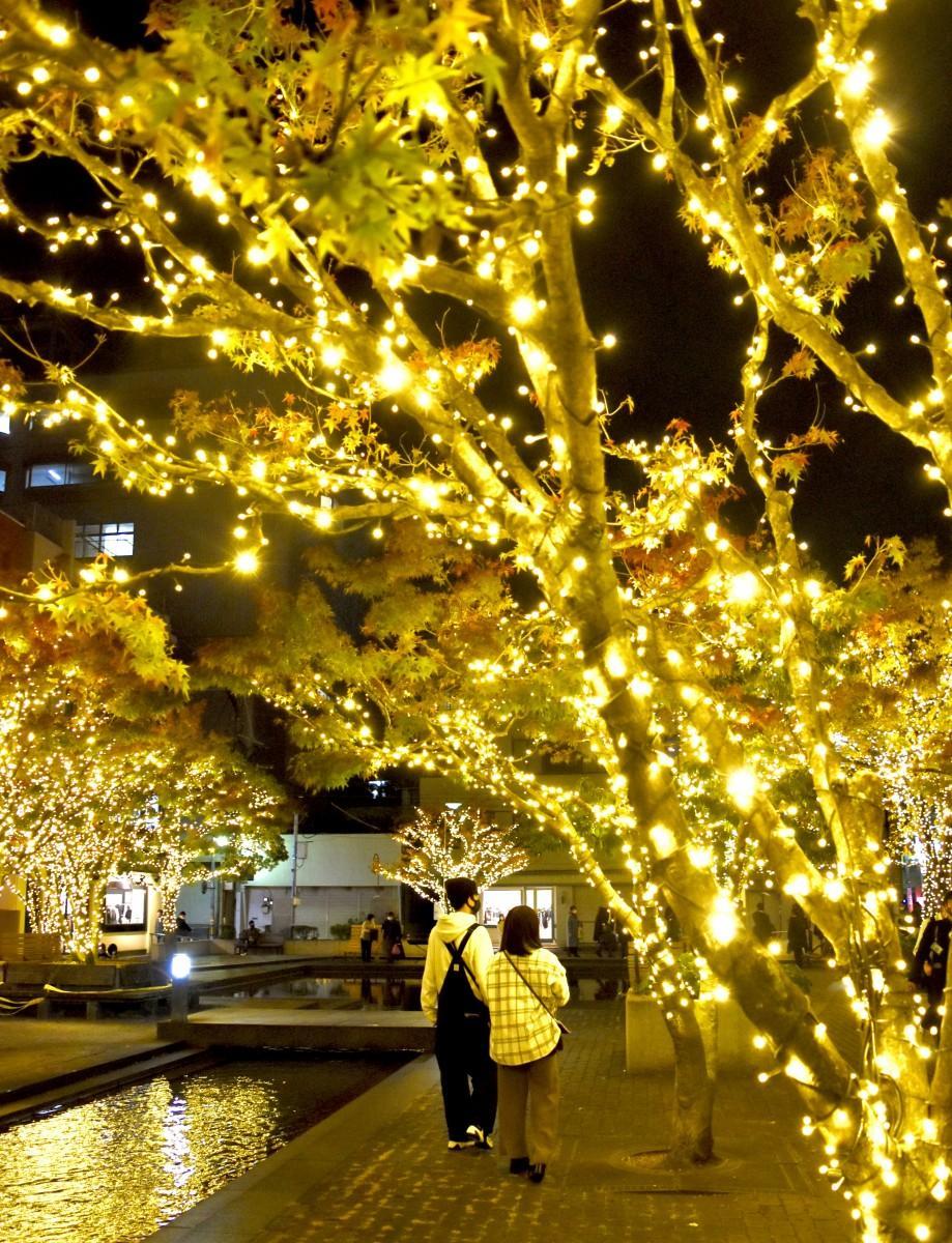 「ふないアクアパーク」はゴールド一色に(おおいた光のファンタジー)