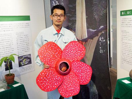 ラフレシアの花の模型をかかえる学芸員の横山直明さん