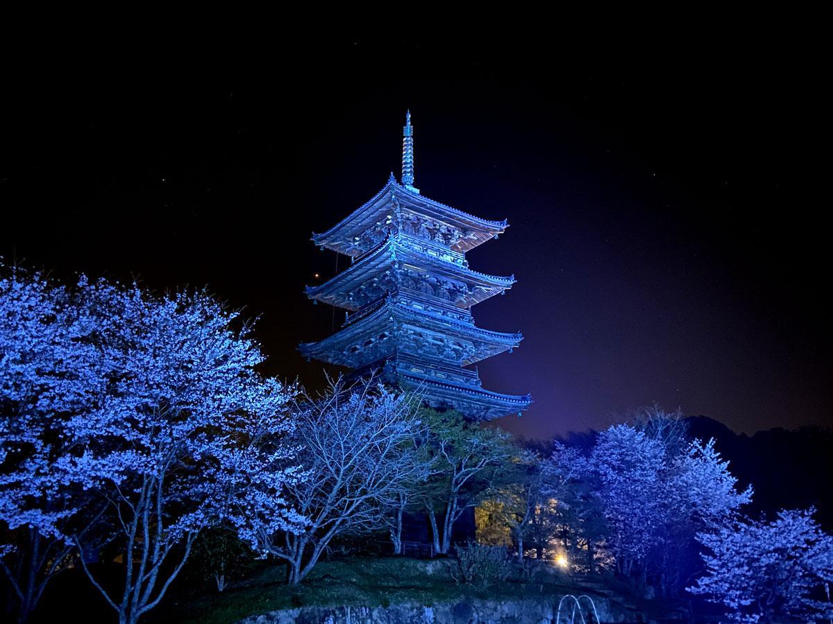 発達障がい啓発のブルーライトアップされた「備中国分寺五重塔」