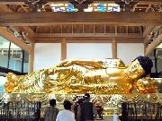 岡崎・一畑山薬師寺に黄金の涅槃像-全長8.94(やくし)メートル