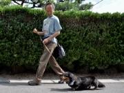 岡崎の「ペットシッター・ジェントリー」、スタッフ採用で東名古屋店