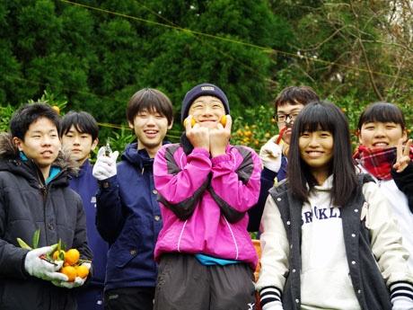 地元・隠岐島前高校の1年生7人が収穫に協力