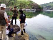隠岐・知夫村でガイド養成講座 南端の無人島・島津島を巡る