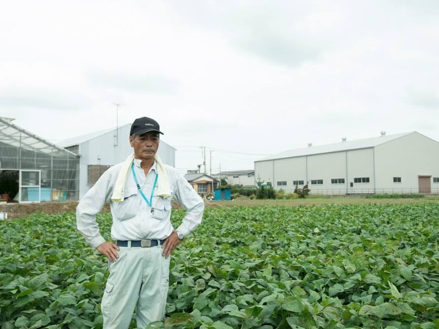 大宮クラフトビール店で採れたて枝豆を食べる会 収穫期間10日の行田在来種