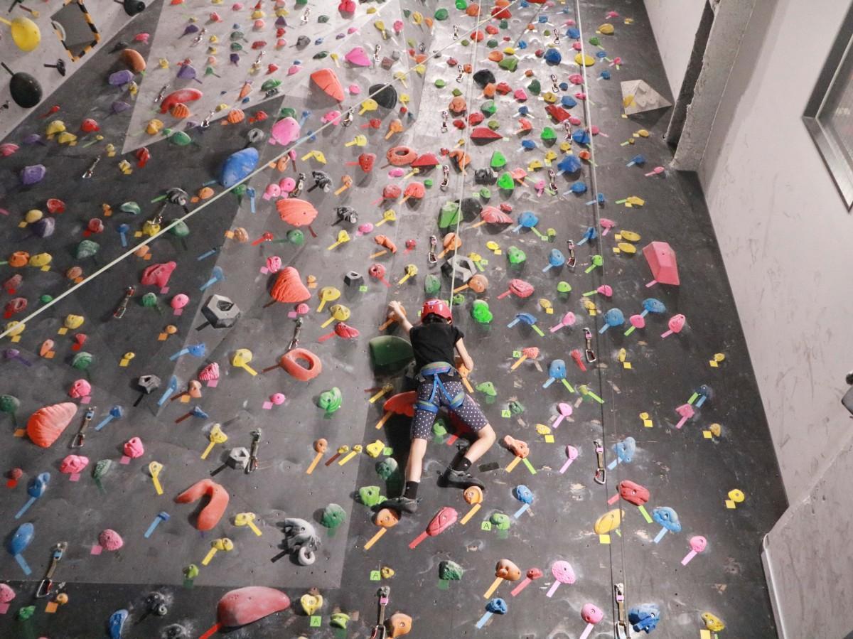 10メートルの壁に挑戦する小学生