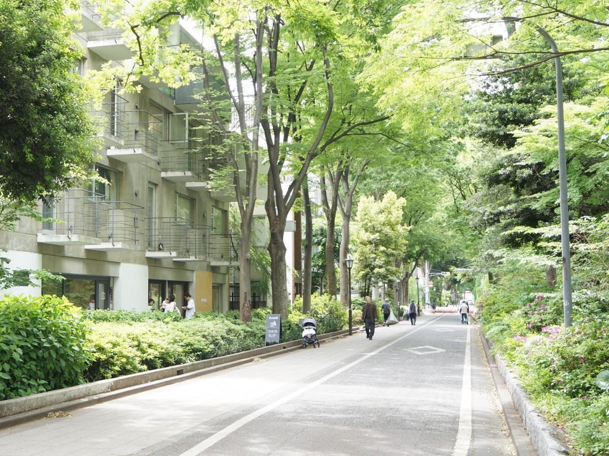 木々の間を歩行者がゆったりと通行できる