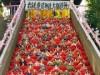 さいたま市岩槻区の愛宕神社に「大ひな壇飾り」 27段にひな人形371体