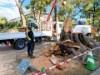 台風19号による倒木で塞がれた氷川参道 無事に撤去作業が進む