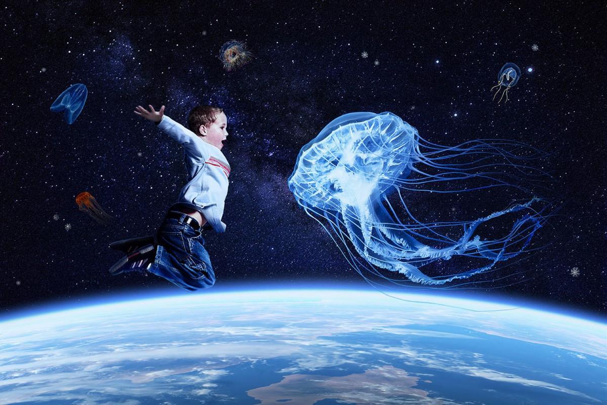 新クラゲエリア「海月銀河」イメージ写真