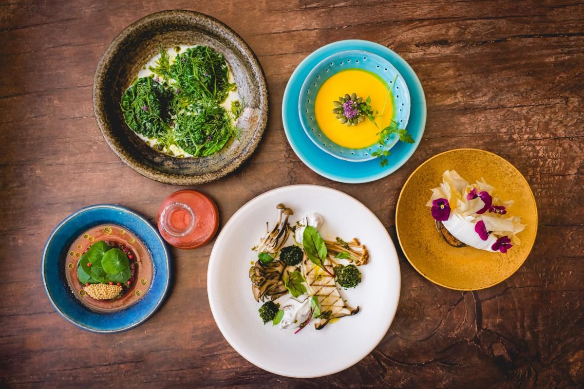 野菜と植物由来の素材だけを使った「プラント ベースド」イタリアンコース