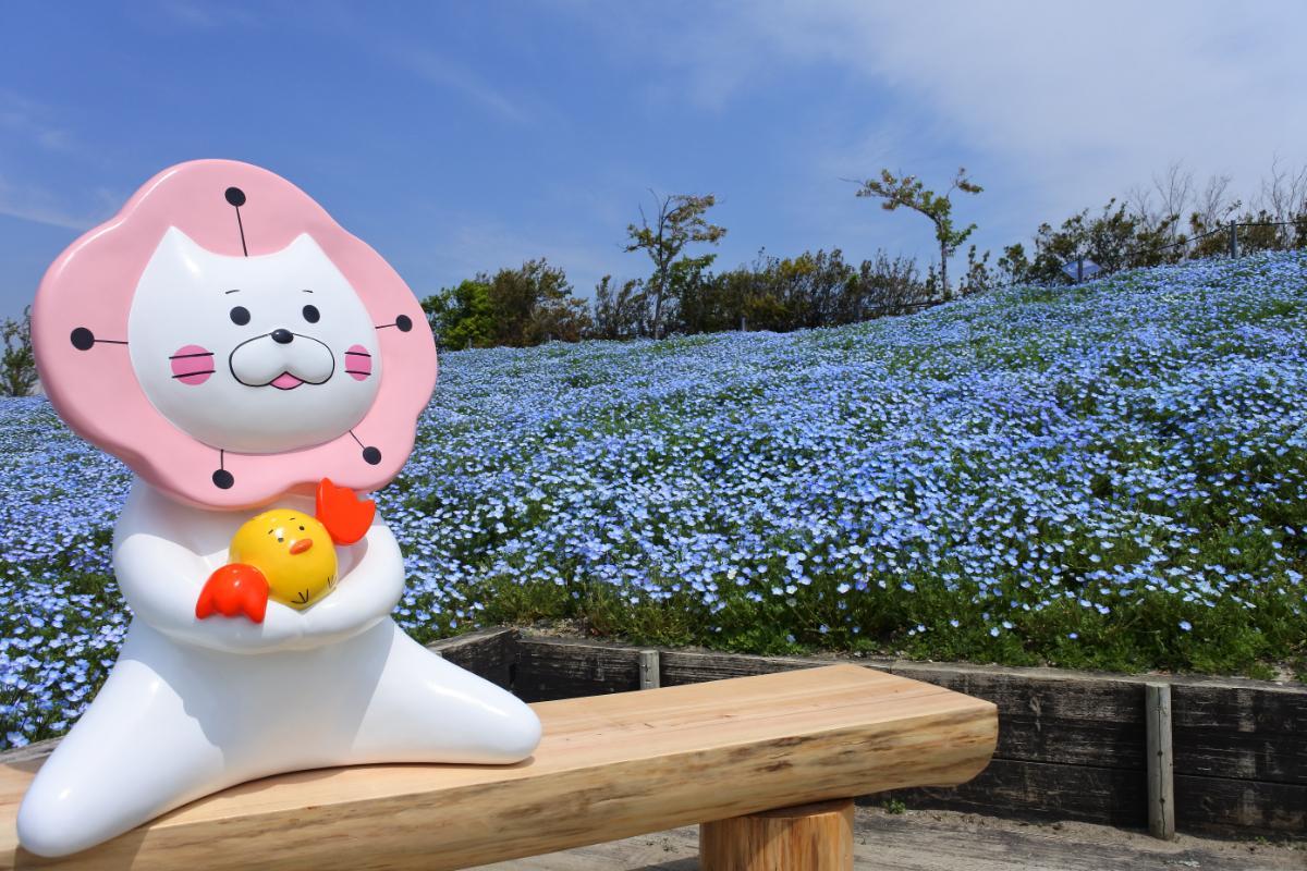 「~空・海・花 プラチナブルーの世界~ネモフィラ祭り 2021」