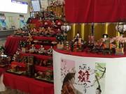 「おたる雛めぐり」開幕 市内44カ所でひな人形展示やイベント