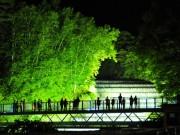 小樽・奥沢水源地でライトアップイベント 飲食ブースやライブも