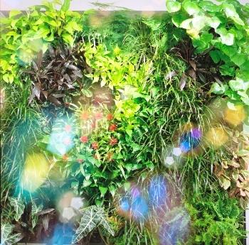 大橋愛「こころで捉えたグリーン」。
