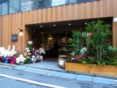 木目調の外壁に植物を配した外観