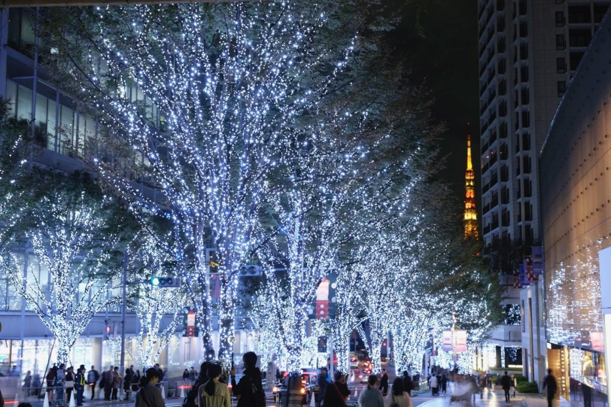東京タワーをバックに約70万ものイルミネーションがともる
