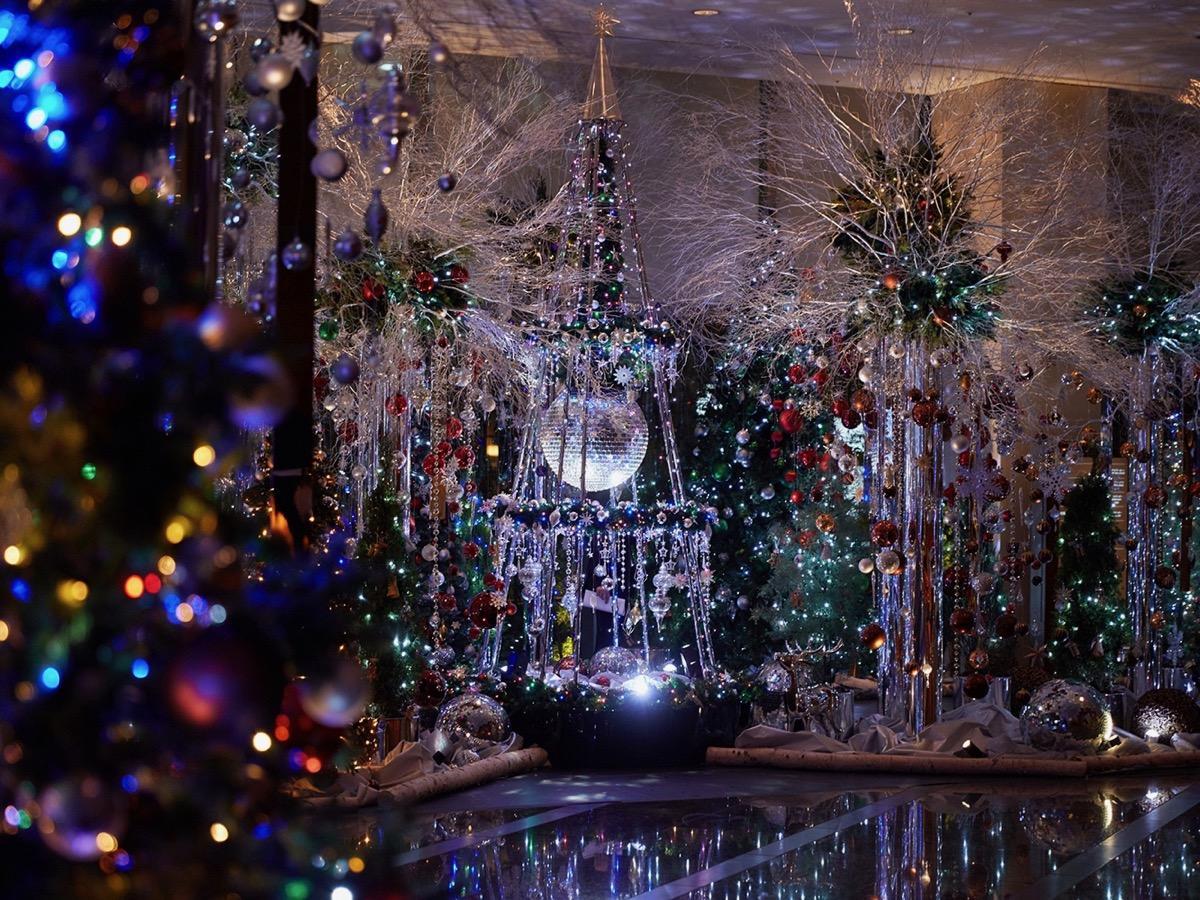 開業15周年にちなんで、15本のクリスマスツリーが展示されるロビーフロア