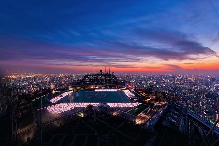 ピンクと赤のイルミネーションと東京の景色が楽しめる同イベント
