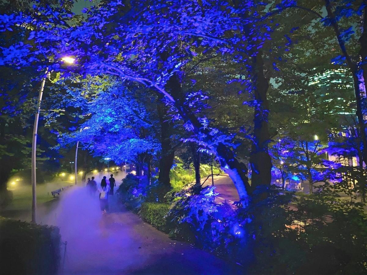 青色のライトアップと夜霧で幻想的な空間を演出する同企画