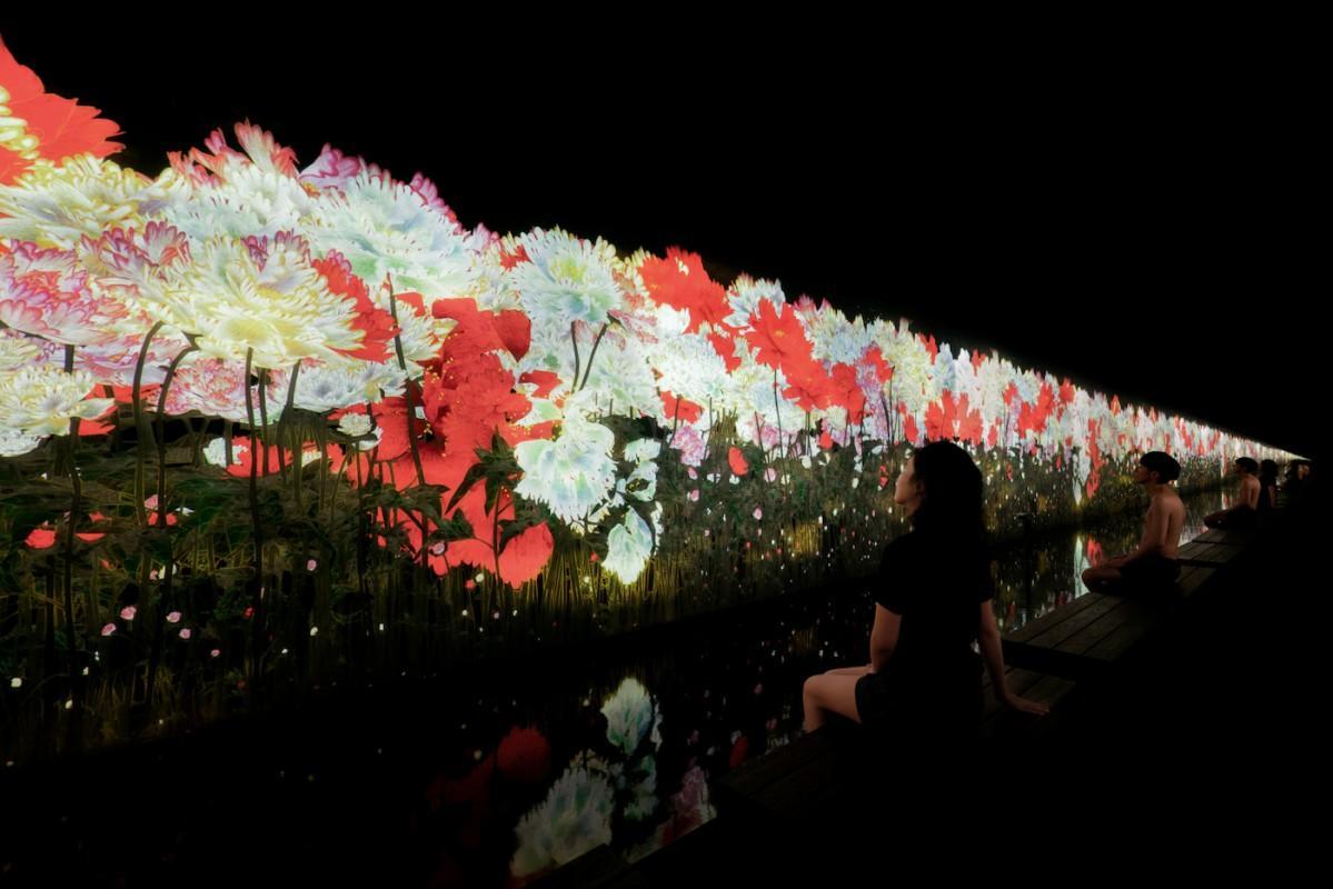 施設内に展示したアート作品の一つ「降り注ぐ雨の中で増殖する無量の生命」 「チームラボ & TikTok, チームラボリコネクト:アートとサウナ」 東京 けやき坂下 (C)チームラボ