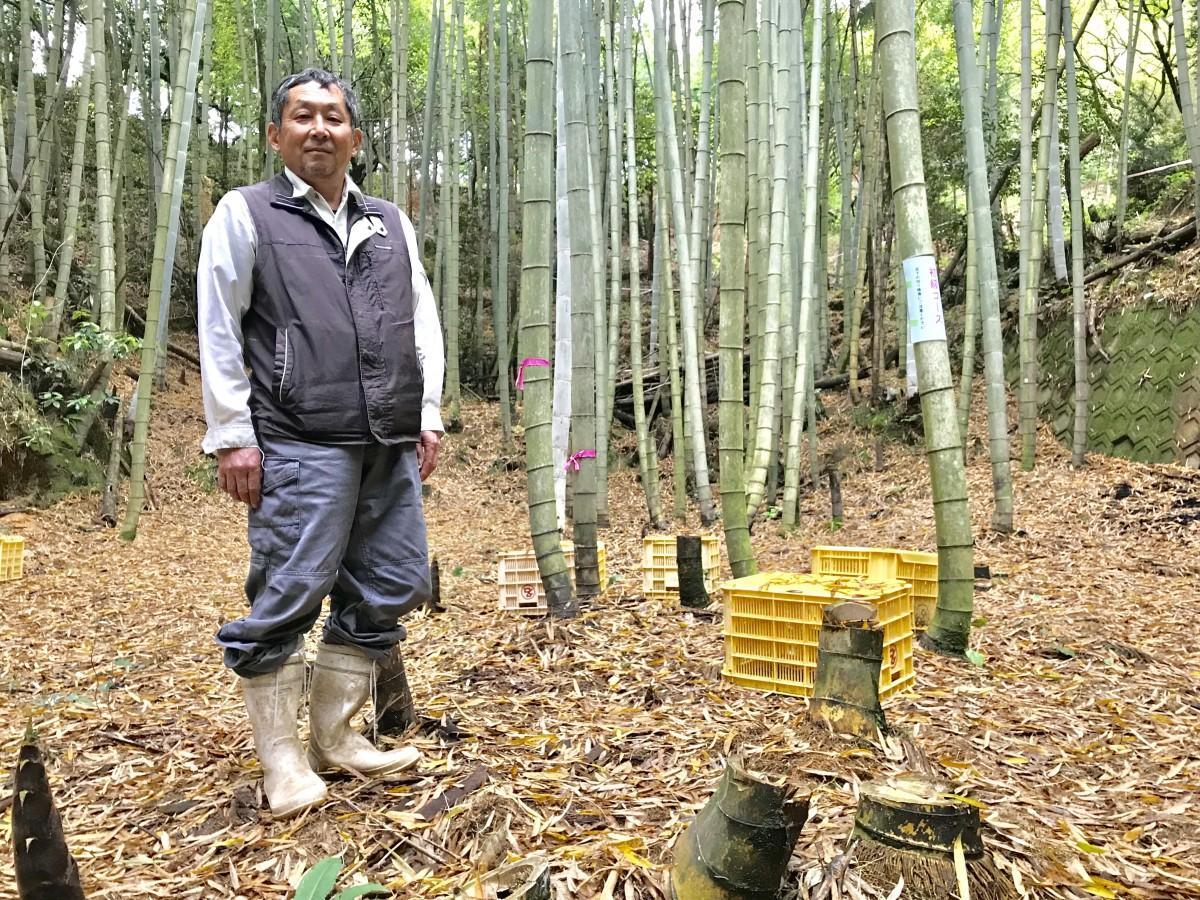 タケノコ園を紹介する「たかしま農園」の高島賢一さん