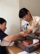 佐賀の猫カフェで飼い方教室 「家族としての猫」の習性や病気など学ぶ