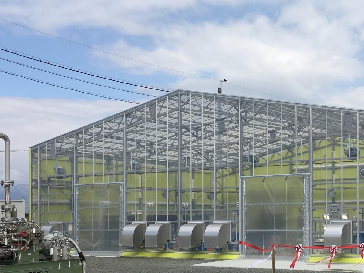 佐賀市の藻類培養施設