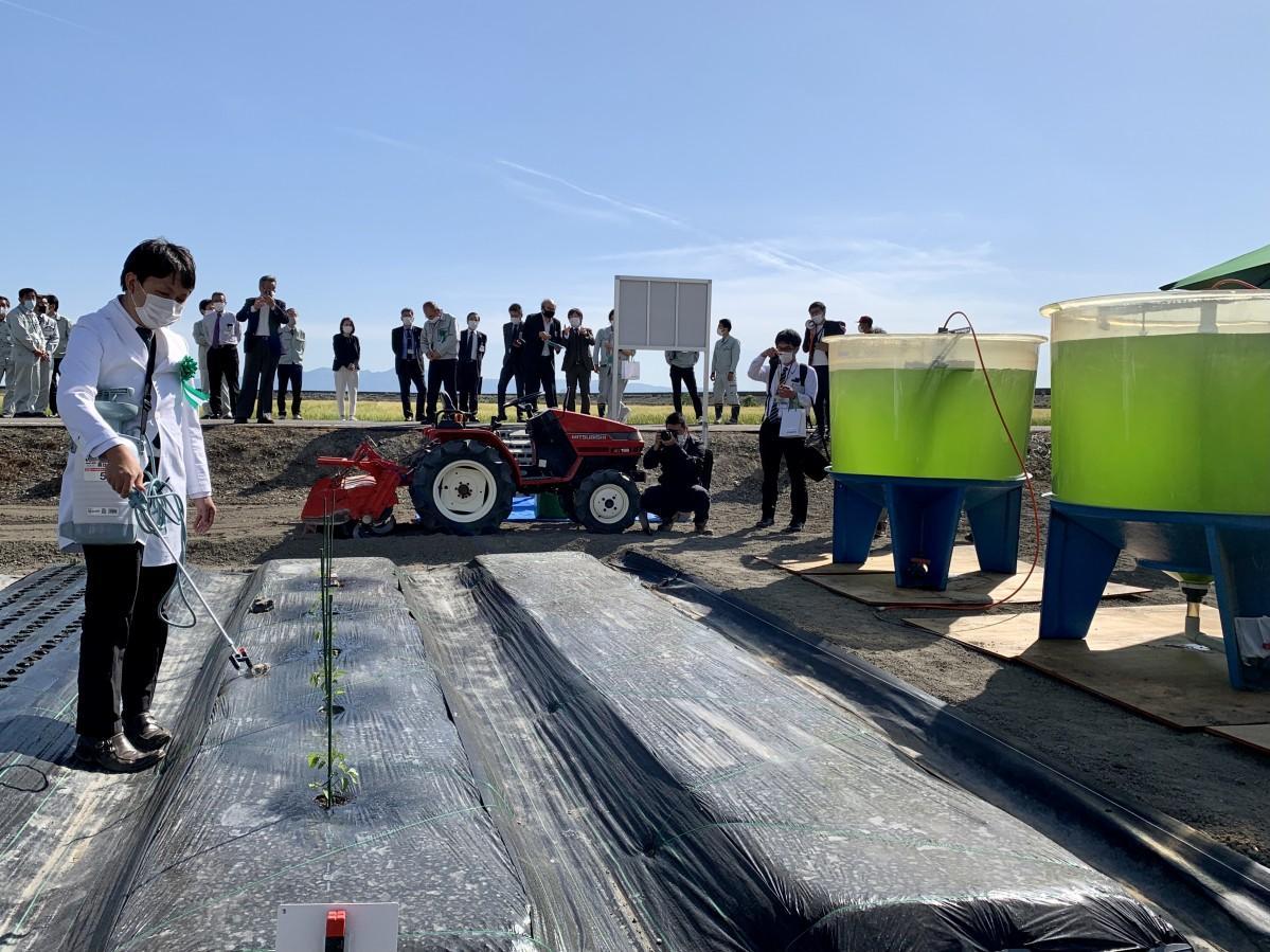 「サステナブルテック・ファーム」開設のデモンストレーションとして、農作物への散水を行う「ユーグレナ」執行役員研究会発担当の鈴木健吾さん