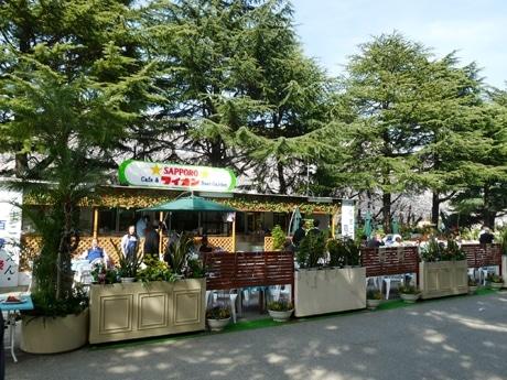 鶴舞公園の特設ビアガーデン「サッポロビール カフェ&ライオンビヤガーデン」。満開の桜の前で
