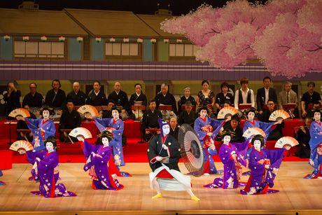 「第70回名古屋をどり」で上演された「助六好尾張錦絵」(撮影:杉原一馬)