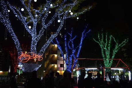 栄・池田公園にイルミネーションが点灯