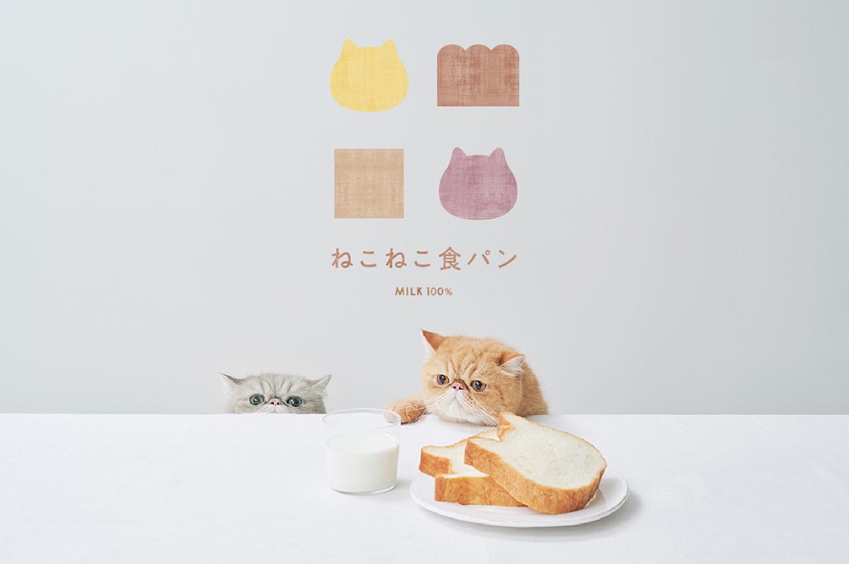「ねこねこ食パン」イメージビジュアル(画像提供=オールハーツ・カンパニー)