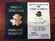 三軒茶屋のアジアンバルが「パクチーパスポート」 6カ月パクチー食べ放題に