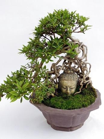 「東京盆栽生活空間」で販売する、仏像と融合した「仏像盆栽」