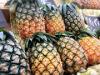 三軒茶屋の農業支援ベンチャー、オーガニック野菜の販売サイトを正式公開