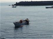 陸前高田の広田湾でウニ漁解禁-「大きさは例年以上」と高値に期待